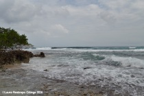 cabo tiburon - playa 7