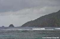 cabo tiburon - selva y mar 1