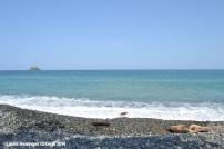 capurgana - playa 5