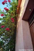 cartagena - casa rosada 5