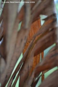 taller fotosigno 11
