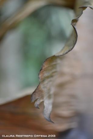 taller fotosigno 12