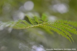taller fotosigno 4