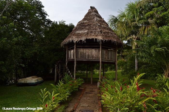 El Cocotal 1