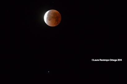 Palomino Eclipse 5