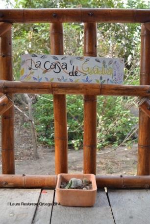 Palomino La Casa de Guadua 3
