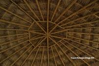 Palomino La Casa de Guadua 6
