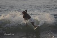 Piyi surf 13