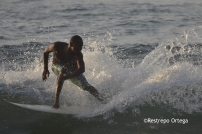 Piyi surf 15