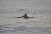 Piyi surf 16