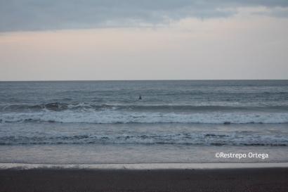 Piyi surf 22