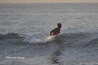 Piyi surf 26