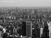 NYC 54