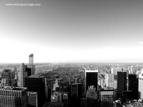 NYC 56