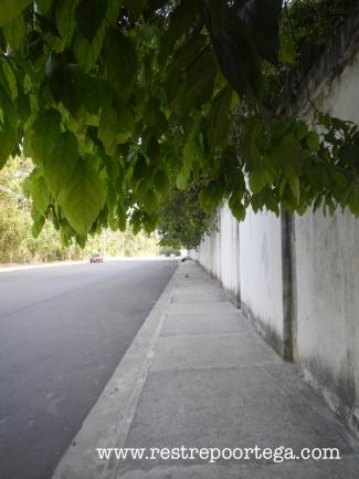Manaus Ponta Negra 7