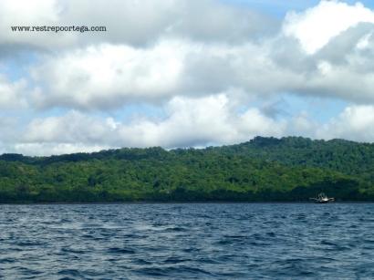 Nuqui ballenas 1