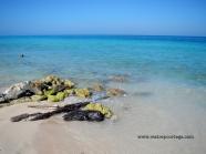 Playa Blanca Barú 7