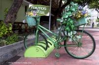 Recife Antigo 13