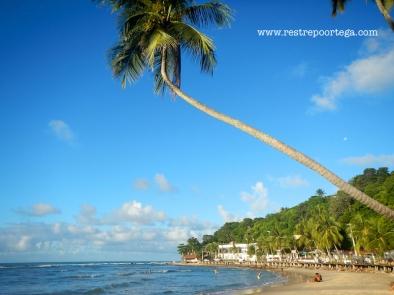 Praia Central Pipa 1
