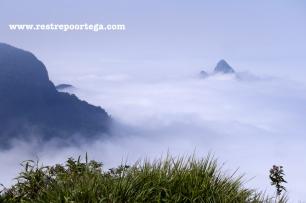 Rio de Janeiro Pedra Bonita 5