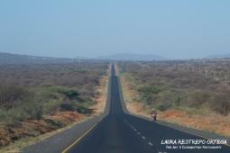 TNZ1-Africa road