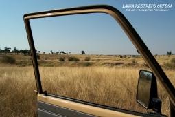TNZ3-Africa car grass
