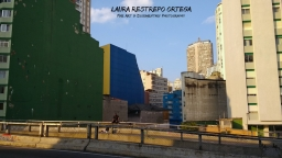 BRA16-Sao Paulo city 2