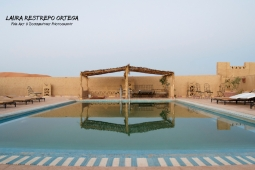 MRC5-pool in the Sahara
