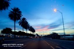 USA7-Miami sunset